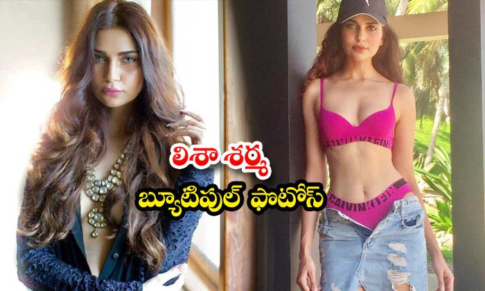 Bewitching pictures of Hardik Pandyas ex-girlfriend Lisha Sharma