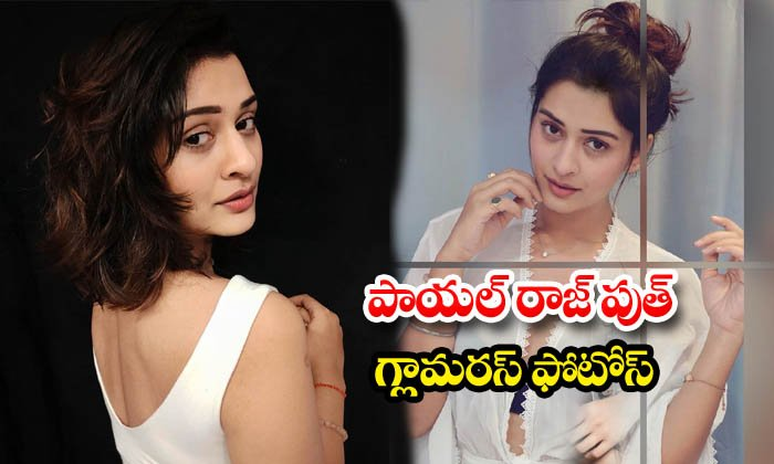 Payal Rajput stunning images
