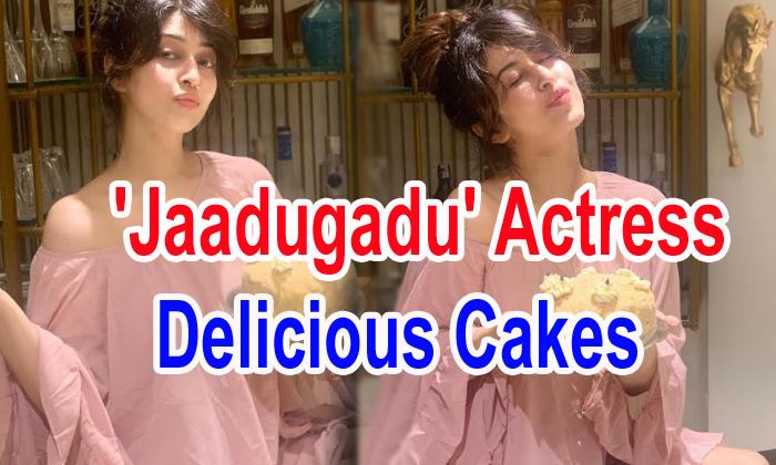 Pic Talk: 'jaadugadu' Actress Delicious Cakes