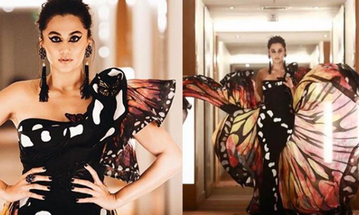 Pic Talk: Tapsee's Filmfare Debut-Latest News English-Telugu Tollywood Photo Image