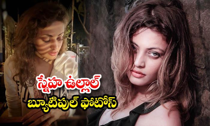 Glamorous photos of actress Sneha Ullal
