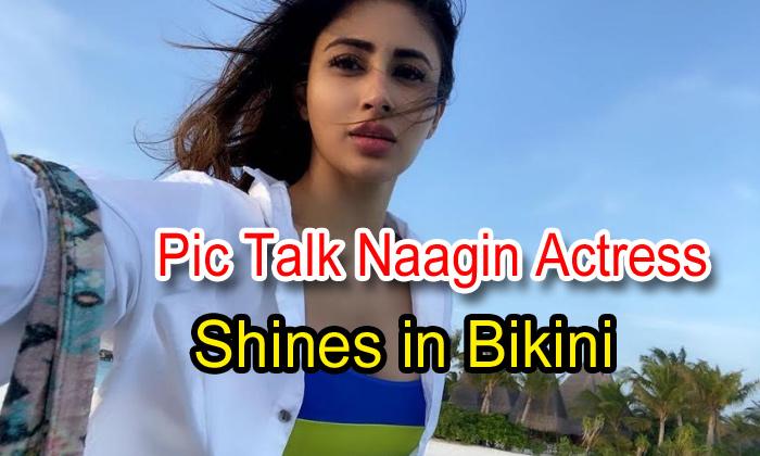 Pic Talk: Naagin Actress Shines In Bikini