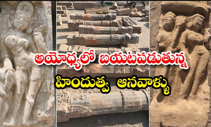 Ancient Idols Pillars And Shiv Ling Found In Ayodhya