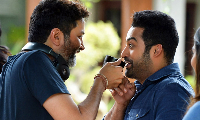 త్రివిక్రమ్ కోసం డబుల్ గేమ్ ఆడుతున్న తారక్-Breaking/Featured News Slide-Telugu Tollywood Photo Image