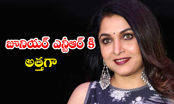 Ramya Krishna Is Playing Important Role In Ntr And Trivikram Movie