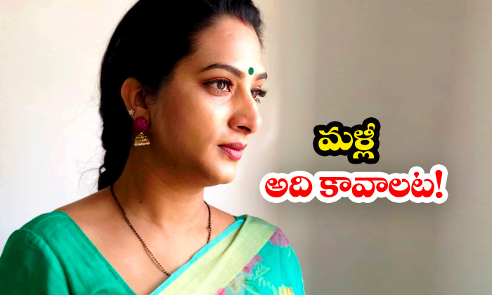 Surekha Vani Small Screen Tollywood