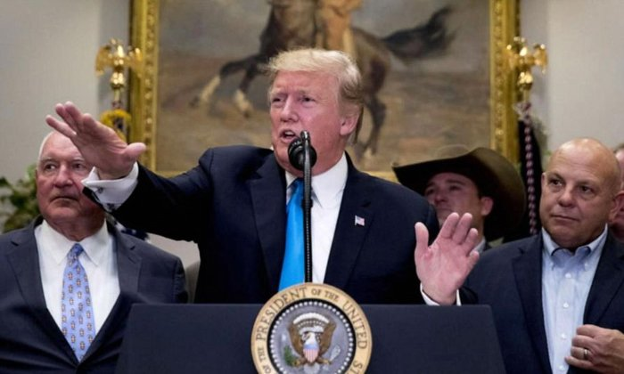 Telugu America, Donald Trump, Hydroxychloroquine, Peolsi, Trump And Pelosi-