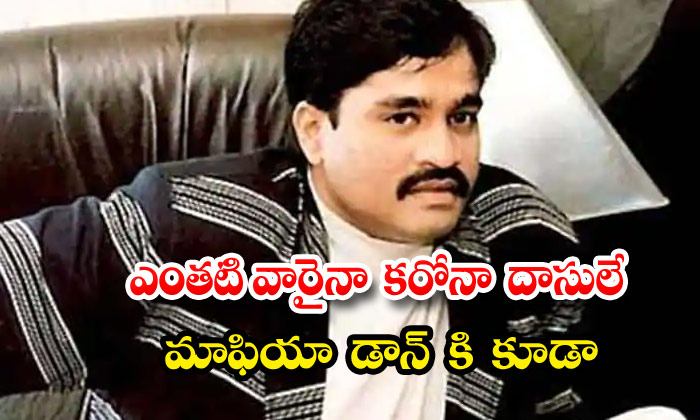 Underworld Don Dawood Ibrahim And His Wife Test Positive