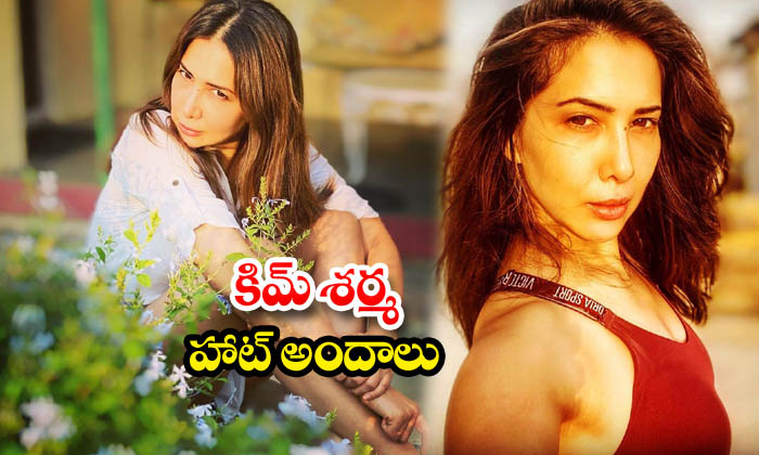 Kim Sharma beautiful images