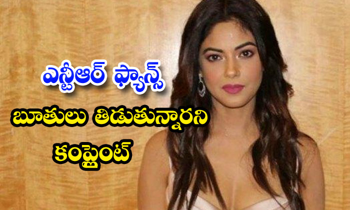 Actress Meera Chopra Jr Ntr Fans Troll