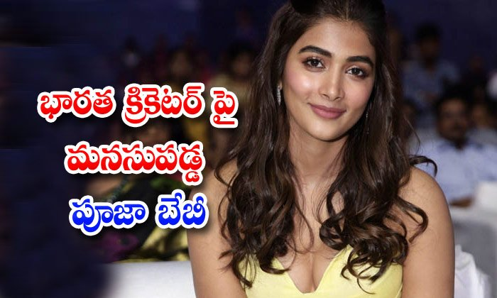 Tollywood Heroine Pooja Hegde Reveals About Her Favourite Cricketer