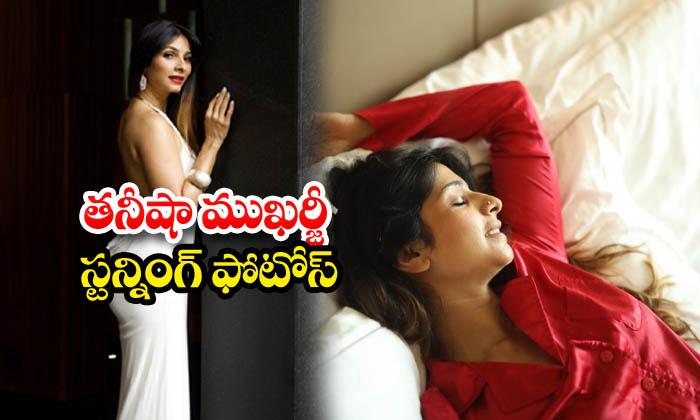 Tanishaa Mukerji glamorous images