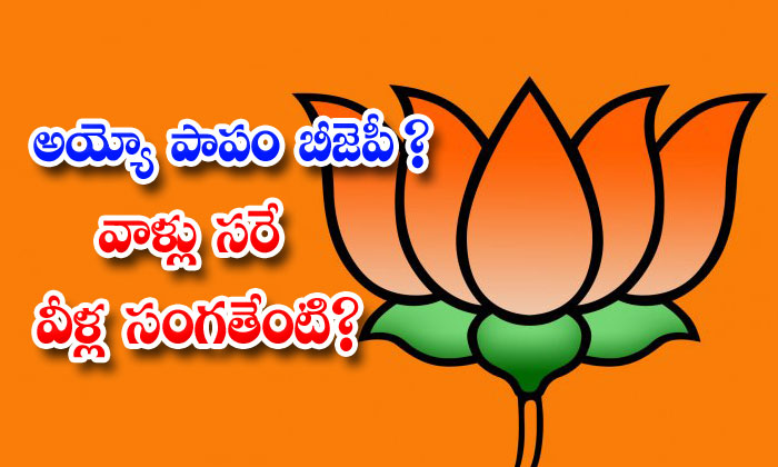 Ap Bjp Leaders Ycp Govt