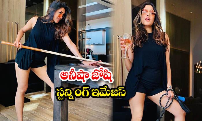 Actress Aneesha Joshi Trendy Clicks-అనీషాజోషిస్టన్నింగ్ ఇమేజస్