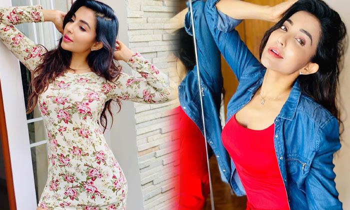 Actress Parvati Nair Captivating Clicks-telugu Actress Hot Photos Actress Parvati Nair Captivating Clicks - Telugu Imag High Resolution Photo