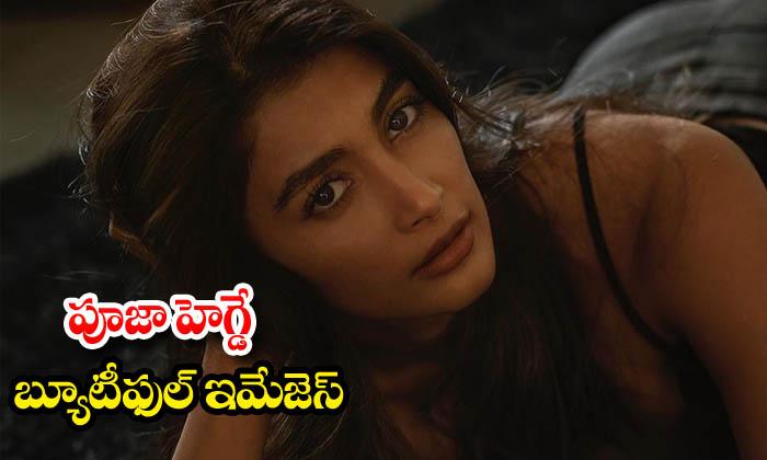 Actress Pooja Hegde latest HD images-పూజా హెగ్డే బ్యూటిఫుల్ ఇమేజెస్