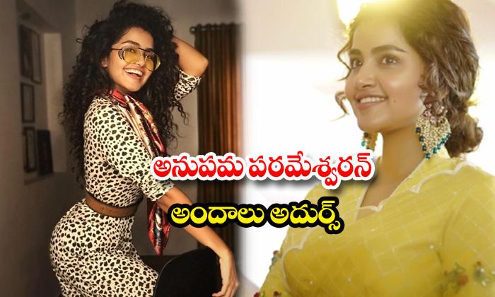 Actress anupama parameswaran stunning images-అనుపమ పరమేశ్వరన్అందాలు అదుర్స్