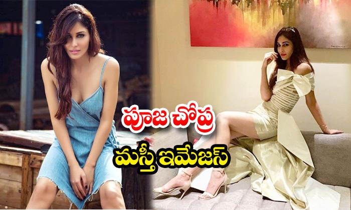 Actress pooja chopra beautiful images -పూజ చోప్రమస్తీ ఇమేజస్