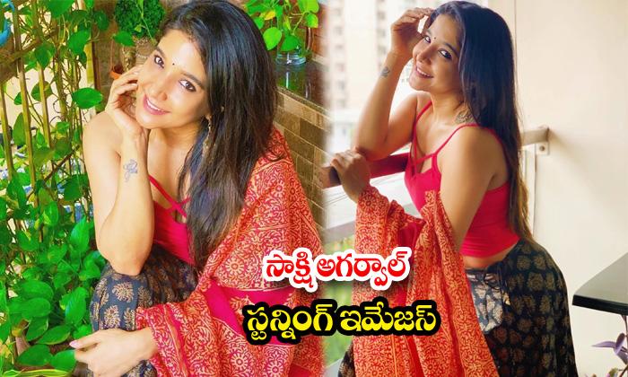Actress sakshi agarwal awesome poses-సాక్షి అగర్వాల్ స్టన్నింగ్ ఇమేజస్