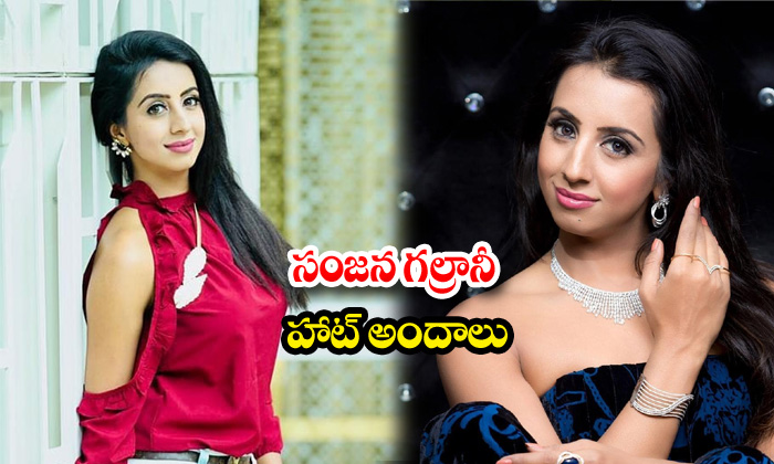 Actress sanjjanaa galrani beautiful images-సంజనగల్రానీహాట్ అందాలు
