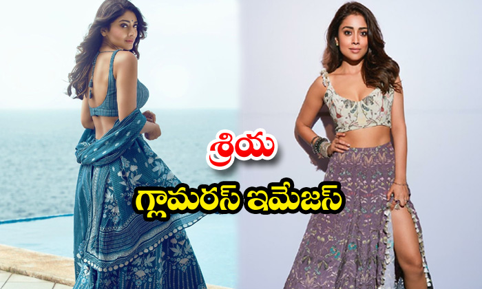 Actress shriya saran through back images -శ్రియగ్లామరస్ ఇమేజస్