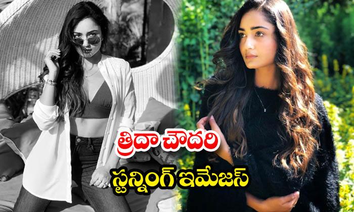 Actress tridha choudhury glamours pics-త్రిదా చౌదరిస్టన్నింగ్ ఇమేజస్