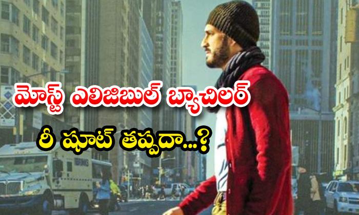 Most Eligible Bachelor Movie Re Shoot Nagarjuna