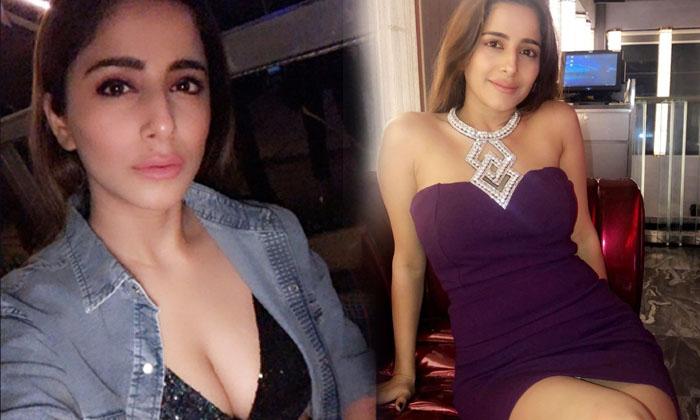 Amazing Pictures Of Glamorous Kate Sharma-telugu Actress Hot Photos Amazing Pictures Of Glamorous Kate Sharma - Telugu A High Resolution Photo