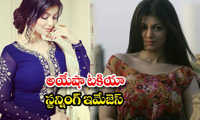 Ayesha takia romantic and hot look images-అయేషా టకియా స్టన్నింగ్ ఇమేజెస్
