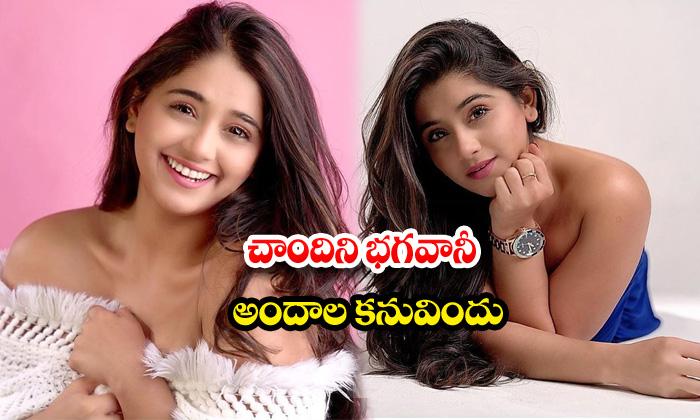 Beauty chandni bhagwanani romantic poses-చాందిని భగవానీఅందాల కనువిందు