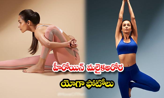 Bollywood actress malaika arora latest clicks-హీరోయిన్మలైకాఅరోరాయోగాఫోటోలు