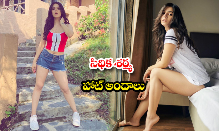 Bollywood beauty sidhika sharma latest stills-సిధిక శర్మహాట్అందాలు