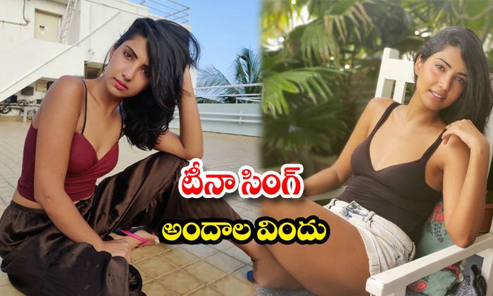 Bollywood beauty teena singh hot images-టీనాసింగ్ అందాల విందు