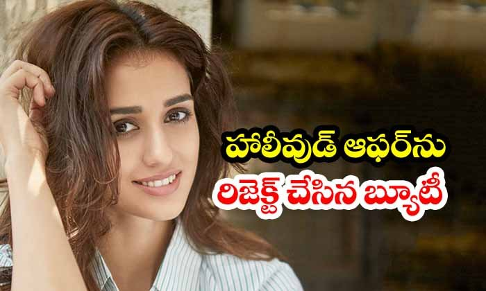 Disha Patani Rejects Hollywood Offer