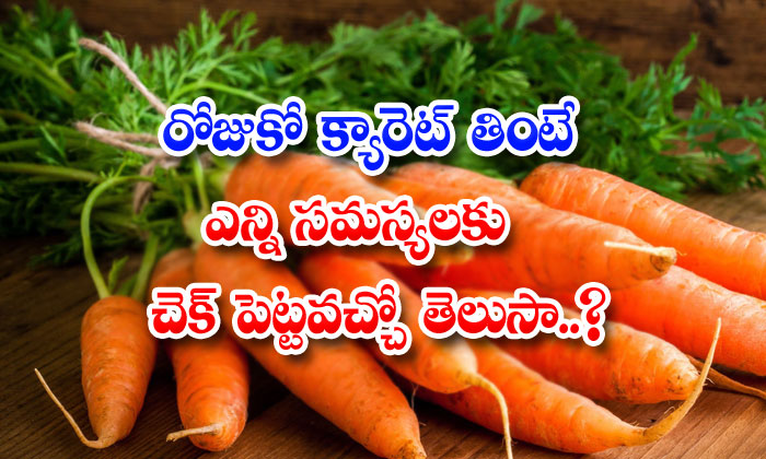 What Are The Health Benefits Of Carrot