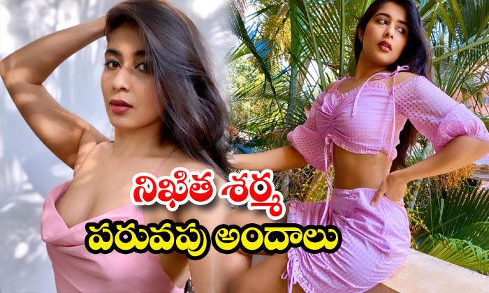 Gorgeous model nikita sharma images-నిఖిత శర్మపరువపు అందాలు