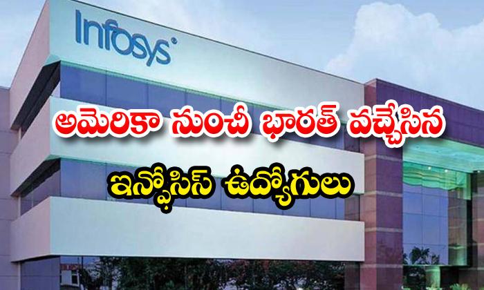 Infosys Back Files 200 Employees India