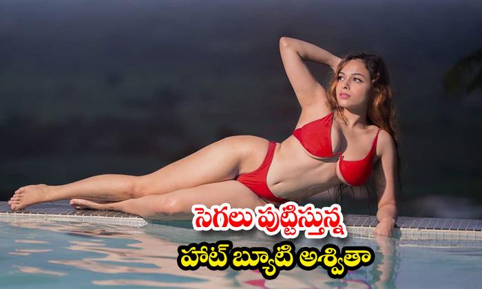 Model Ashwitha hot and romantic poses-సెగలు పుట్టిస్తున్నహాట్ బ్యూటీ అశ్వితా