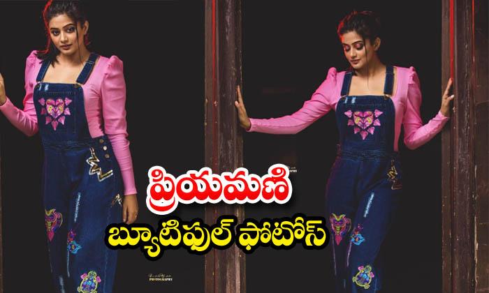 PriyaMani latest glamorous photoshoot-ప్రియమణి బ్యూటిఫుల్ ఫొటోస్