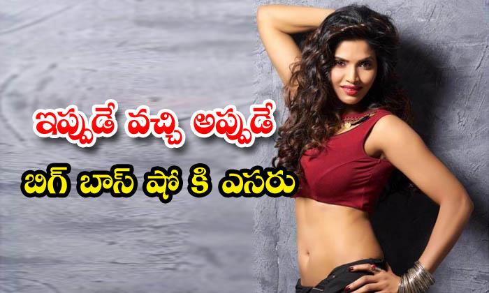 Sree Rapaka Is Participating As A Contestant In Big Boss Telugu Season 4