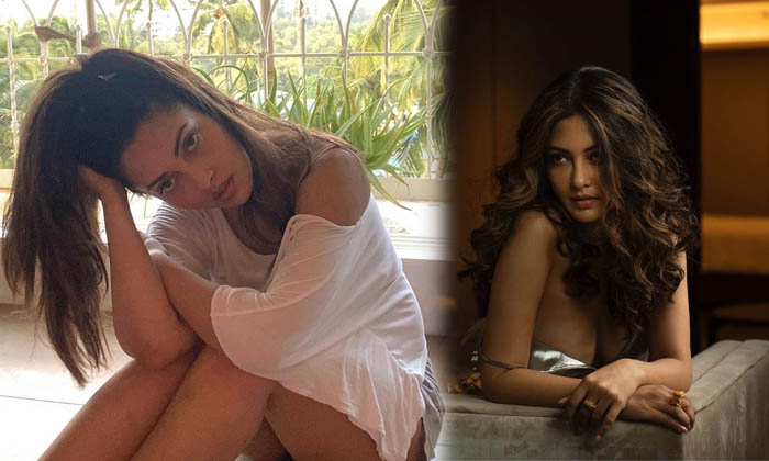 These Stunning Pictures Of Riya Sen Make Heads Turn On The Show Scale Media-telugu Actress Hot Photos These Stunning Pic High Resolution Photo
