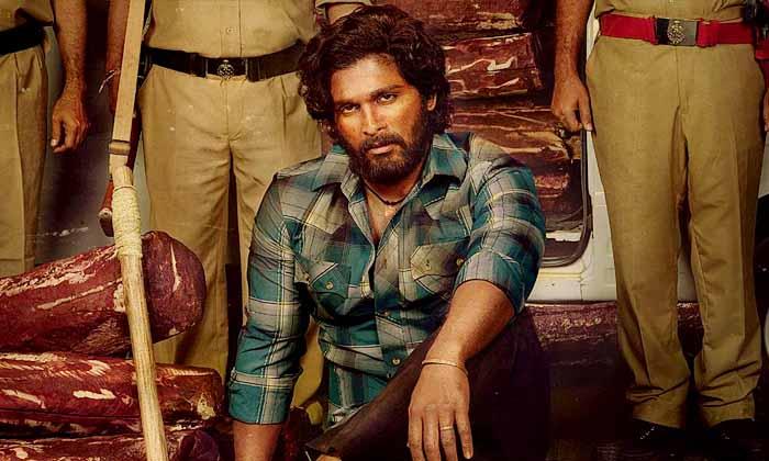 పుష్ప ప్లాన్ మామూలుగా లేదుగా-Breaking/Featured News Slide-Telugu Tollywood Photo Image