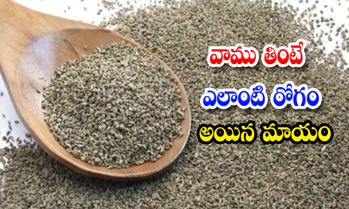 TeluguStop.com - Benefits Of Ajwain