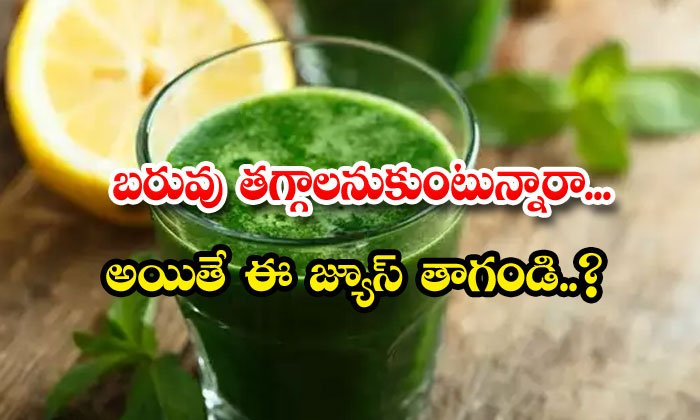 Curry Leaves Juice Lose Weight