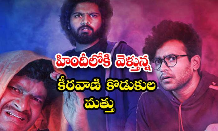 Matthu Vadalaraa Movie Remake In Hindi