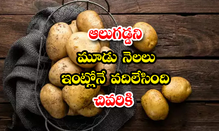 Potatoes Sprout After 3 Months Viral