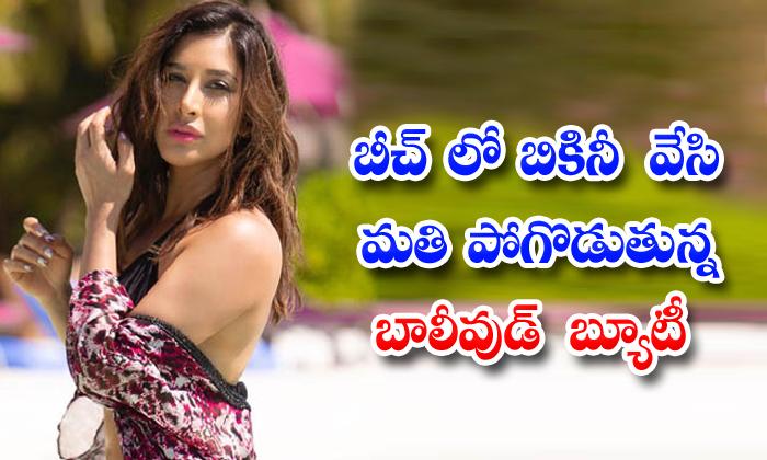 Bollywood Beauty Sophie Choudry Heat In Bikini