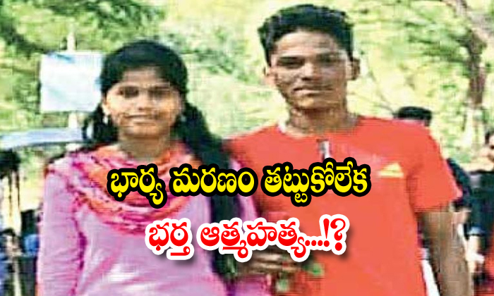 Young Man Suicide After Wife Suddenly Death