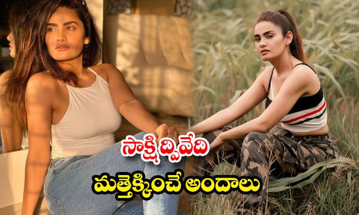 Actress Sakshi Dwivedi romantic stills -సాక్షి ద్వివేది మత్తెక్కించే అందాలు