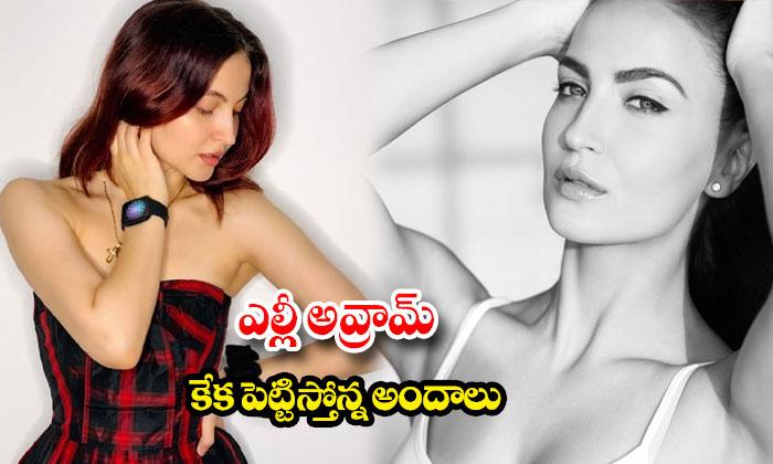 Actress elli avrram glamorous images-ఎల్లీ అవ్రామ్ కేక పెట్టిస్తోన్నఅందాలు